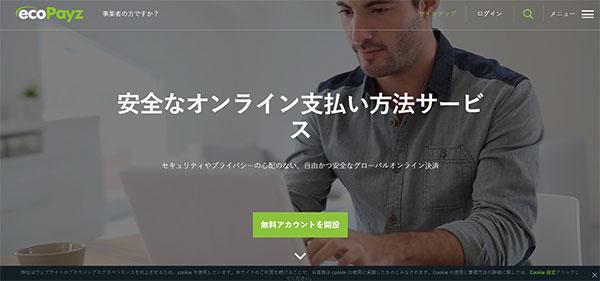 Ecopayz payment official website